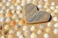 Wooden Heart and Sea Shells Royalty Free Stock Photo