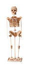 Wooden human skeleton isolated on a white background Royalty Free Stock Photography