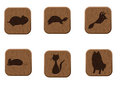 Wooden icons set with pets silhouettes. Stock Photography