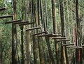 Wooden hanging ladder Royalty Free Stock Photo