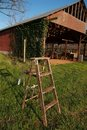 Wooden ladder on grass before barn Stock Image