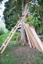 Wooden ladder for tree house construction Stock Image