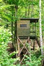 Wooden lodge forester`s with stairs up. In the summer forest. Royalty Free Stock Photo