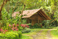 Wooden Log House In A Tropical...