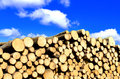 Wooden logs with blue sky on background Royalty Free Stock Photos