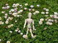 Wooden mannequin between flowers on spring time Ecology and garden concept Royalty Free Stock Photo