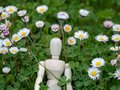 Wooden mannequin between flowers on springtime Ecology and garden concept Royalty Free Stock Photo