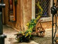 stock image of  Wooden medieval flower cart decorated