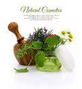 Wooden mortar and cosmetic cream jar with herbs inside Stock Images