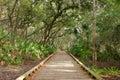 Wooden Nature Trail Bridge Royalty Free Stock Photo