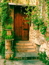 The wooden old door of a house with green leaves photo with filter Stock Image
