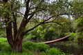 Wooden old swinging bridge Royalty Free Stock Photo