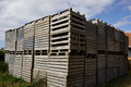 Wooden pallets for cargo and logistic old in a farm yard Stock Photography