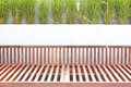 Wooden park bench in the garden outdoor photo of Stock Photo