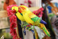 Wooden parrots beautiful shot of yellow colored Stock Images