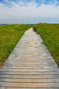 Wooden path leading to sea pathway receding over green grass in background Stock Photography