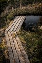 Wooden path over small pond in garden in early spring Royalty Free Stock Photo