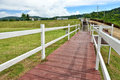 Wooden path a pathway through the farm Royalty Free Stock Photography
