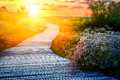 Wooden path at sunset Royalty Free Stock Photo