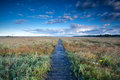 Wooden path through swamps blue sky fochteloerveen netherlands Stock Images