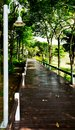 Wooden path walkway Royalty Free Stock Images