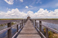Wooden path way elevated over swamp field thailand Stock Photography