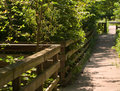 A wooden path in the woods Royalty Free Stock Photo