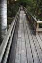 Wooden pathway at the crawford lake ontario canada Royalty Free Stock Photo