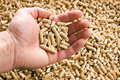 Wooden pellet .ecological heating Stock Images