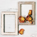 Wooden photo frames with dry roses Royalty Free Stock Photo