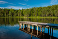 Wooden pier with forest scene Stock Image
