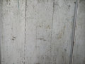 Wooden plank white texture color