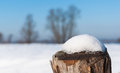 Wooden pole with melding snow on the top Royalty Free Stock Photos