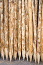 Wooden poles Stock Photo