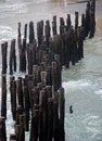Wooden poles stakes at saint malo a port city in northwestern france Royalty Free Stock Photography