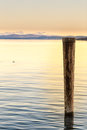 Wooden post in lake closeup of at sunset Stock Photos