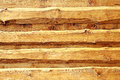 Wooden rustical board siding live edge spruce wood in oak paint Stock Images
