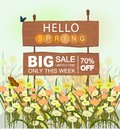 Wooden sale sign with Hello Spring lettering, with flowers and butterflies