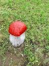 Wooden sculpture of mushroom Royalty Free Stock Photo