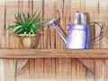 Wooden shelf with flower pot pencil hand drawn illustration of a and a watering can Royalty Free Stock Photo