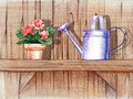 Wooden shelf with flower pot pencil hand drawn illustration of a and a watering can Royalty Free Stock Photos