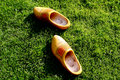 Wooden shoes in the grass Stock Photo