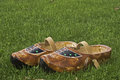 Wooden shoes a pair of traditional brown painted with a leather strap standing in the grass photo taken in may Royalty Free Stock Photography