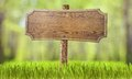 Wooden sign in summer forest grass Royalty Free Stock Photo