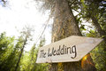 Wooden sign at a wedding ceremony attached to tree pointing towards Royalty Free Stock Images