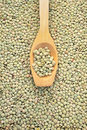 Wooden spoon and dried green lentils Stock Photos