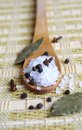 Wooden spoon with sea salt and black pepper Royalty Free Stock Photo