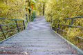 Wooden staircase down from hill Stock Photography