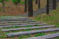 Wooden stairs extend in the woods. Royalty Free Stock Photo