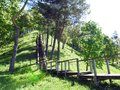 Wooden stairs going on hill top, Lithuania Royalty Free Stock Photo